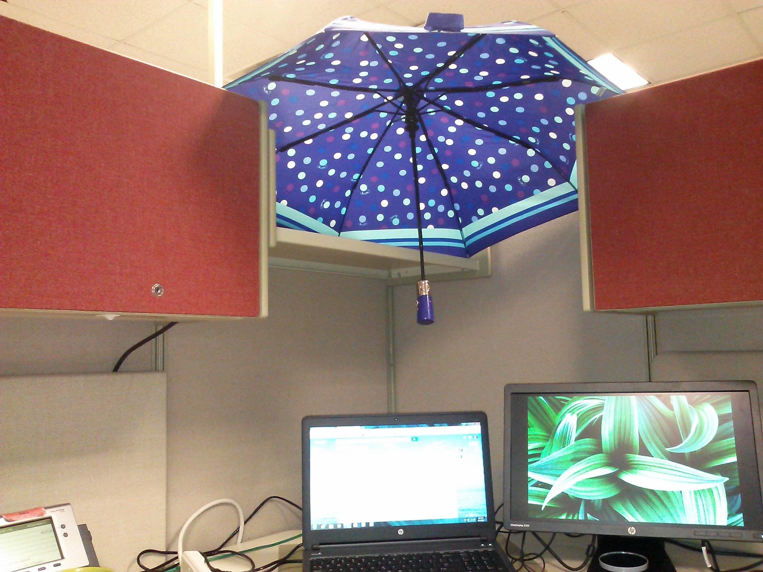 umbrella over cubicle